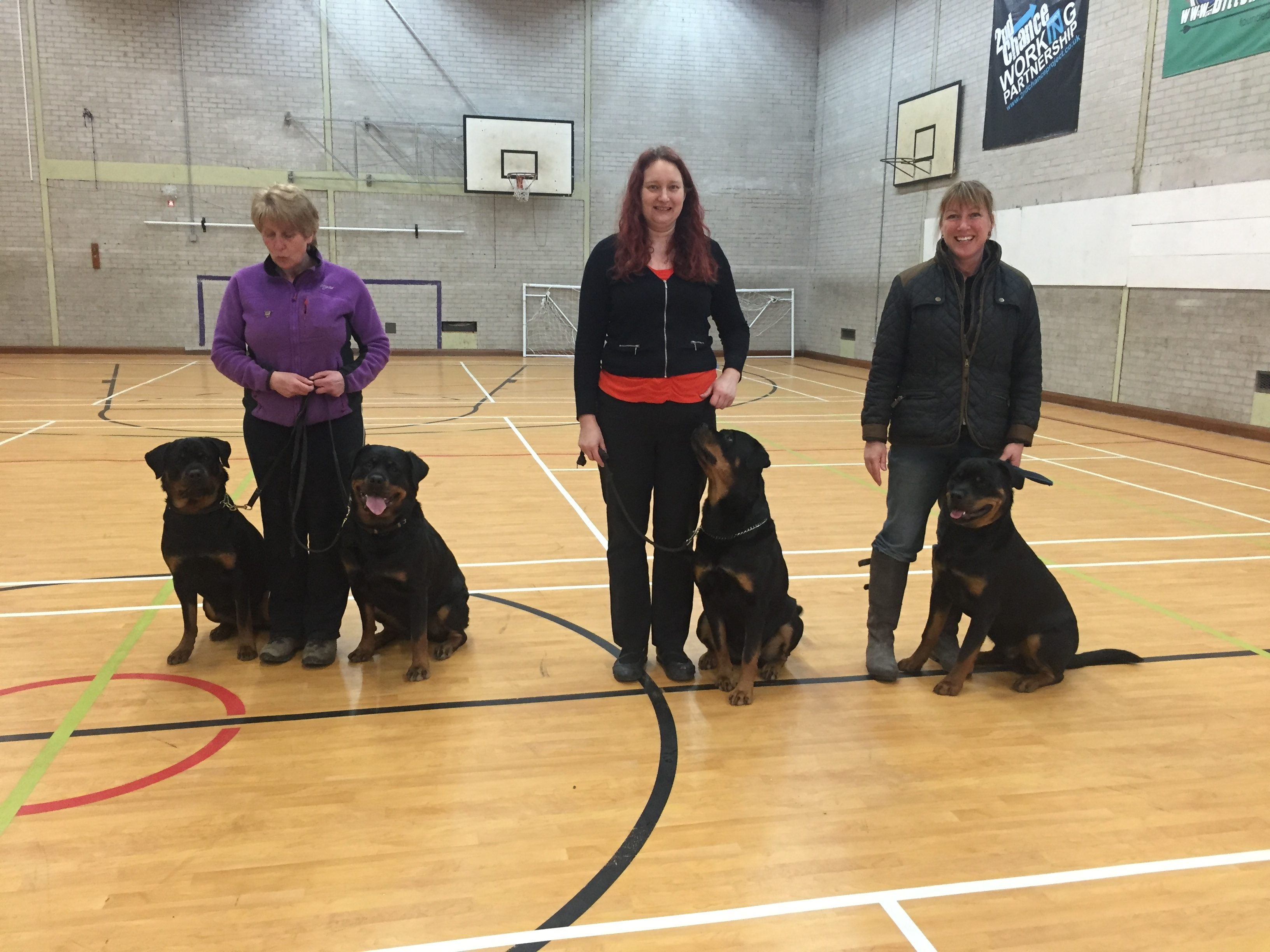 Limited Obedience: Special Pre-Beginners